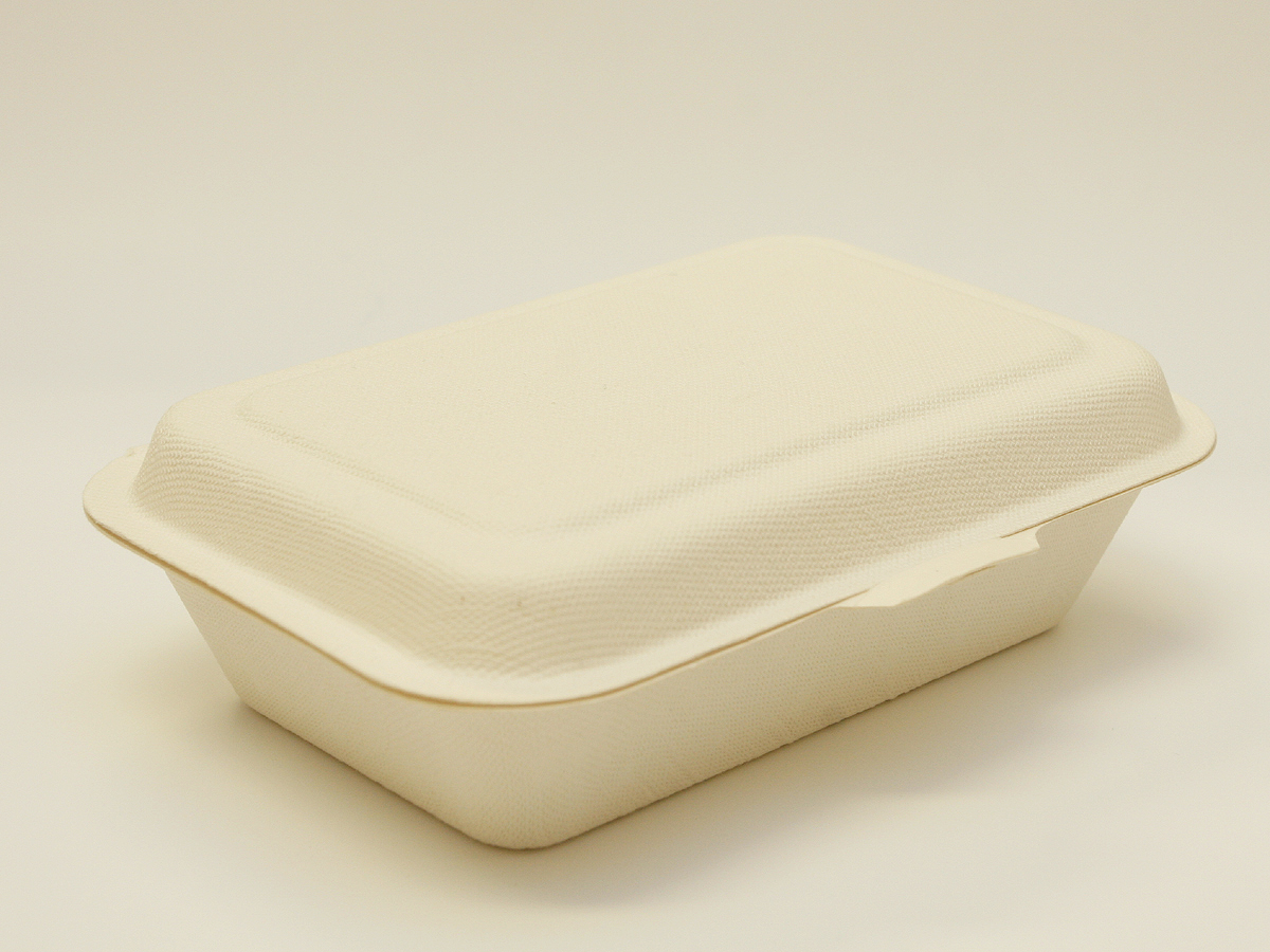 Guideline On How To Promote Green Lunch In Schools Waste